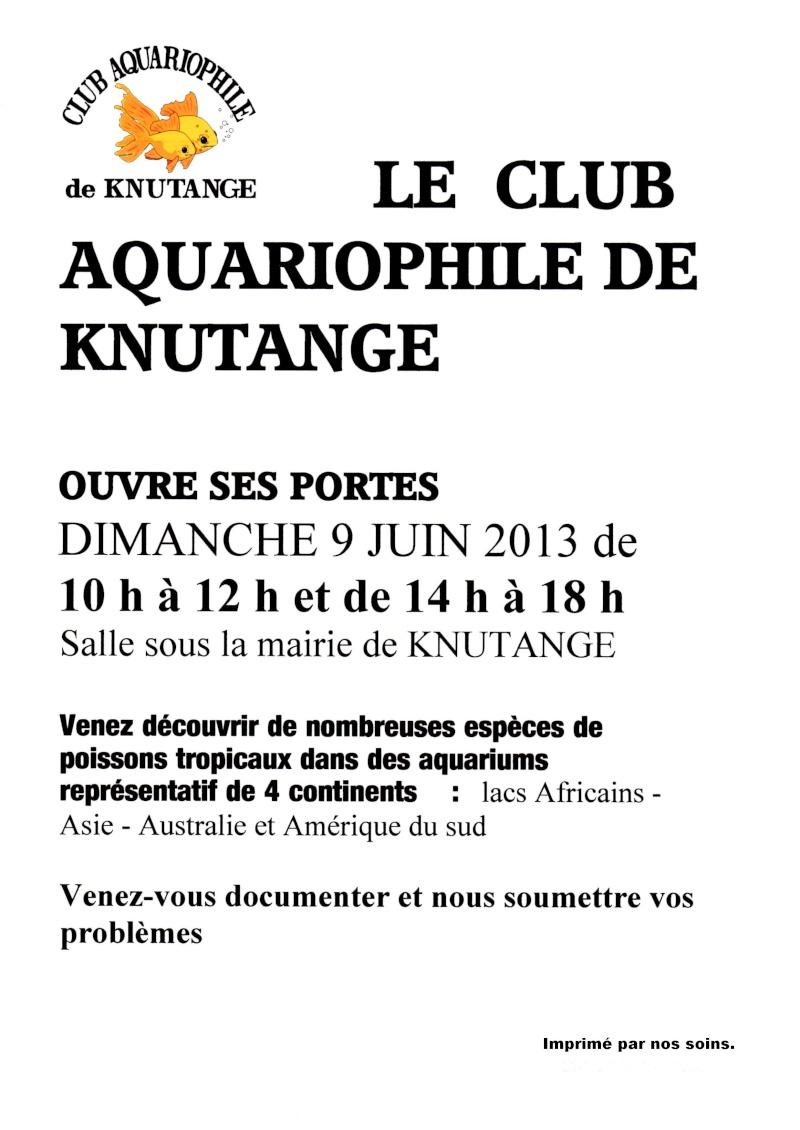 Portes ouvertes club aquario KNUTANGE le 9 juin 2013 Knutan10