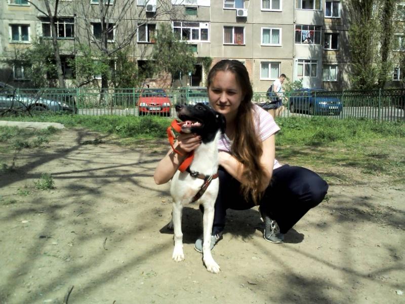 Pepita, née en septembre 2012 Img45110