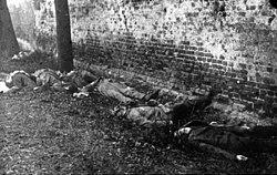 Parlamento, socialismo, violencia, Rosa Luxemburgo.La  contrarrevolución  en Alemania,   1918-19 250px-10