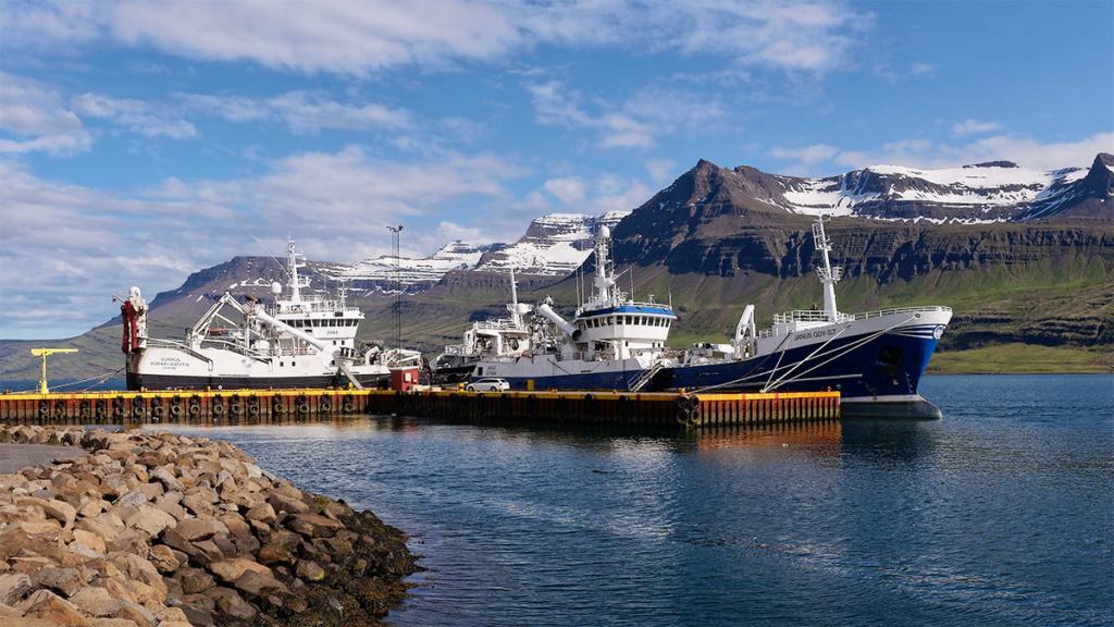 Reyðarfjörður Reyzar10
