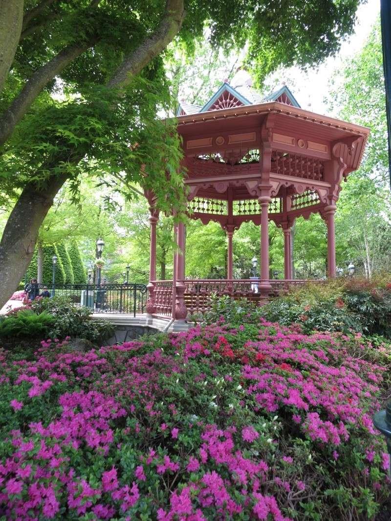 Les Jardins, Les Fleurs et l'Eau au DLP - Page 6 Img_9210