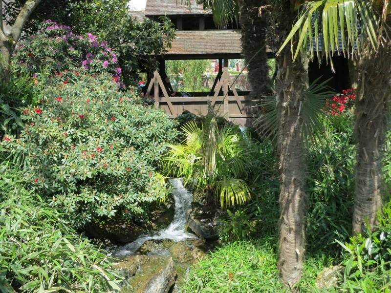 Les Jardins, Les Fleurs et l'Eau au DLP - Page 6 Img_9213