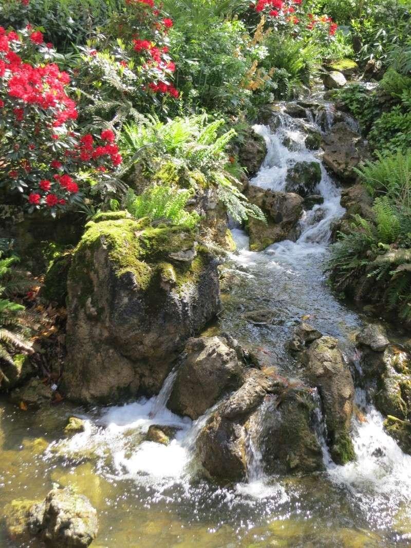 Les Jardins, Les Fleurs et l'Eau au DLP - Page 6 Img_9215