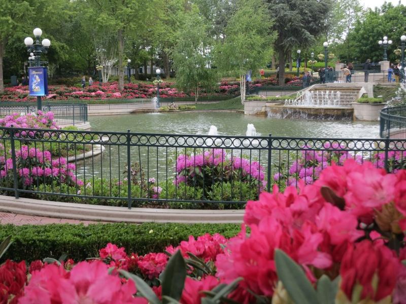 Les Jardins, Les Fleurs et l'Eau au DLP - Page 6 Img_9311