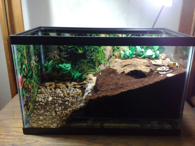 [Sharing] Show Off Your Enclosures - Page 15 12062011