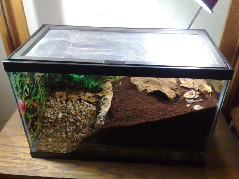 [HOW TO] False bottom Emperor enclosure with pool 12062014