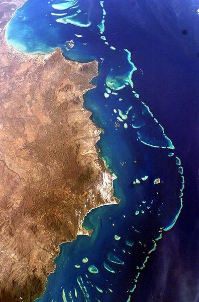 [Australie] Menace sur la Grande Barrière de Corail Gbc-wi10