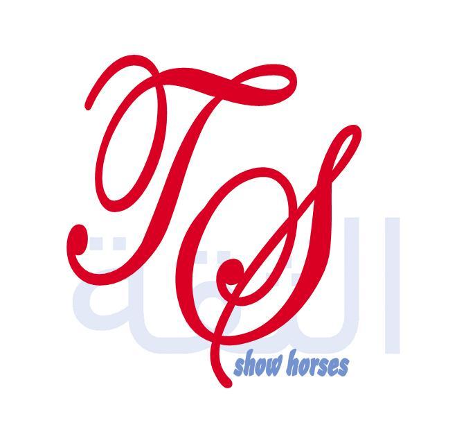 KayPee Designs Ts_sho10