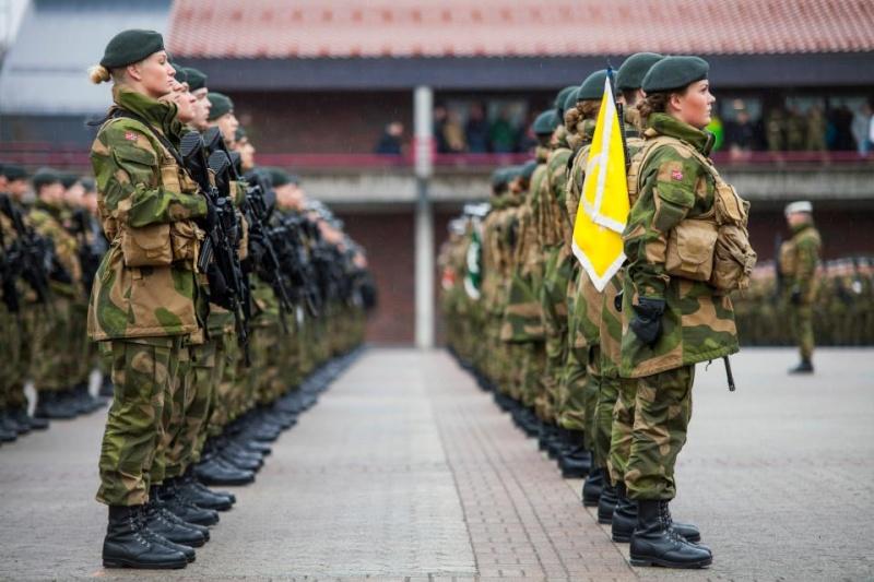 Armée norvegienne/Norwegian Armed Forces - Page 6 No110