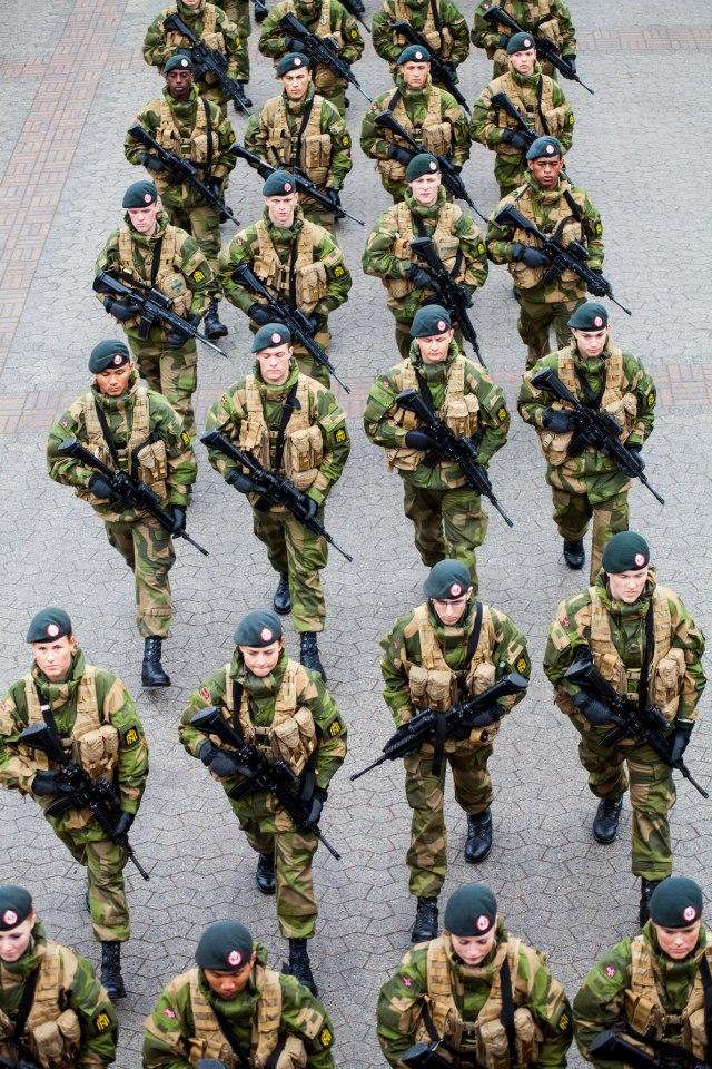 Armée norvegienne/Norwegian Armed Forces - Page 6 No310