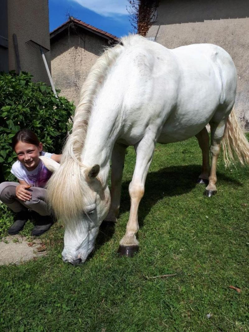 APACHE - ONC poney typé Shetland né en 1997- adopté en juillet 2015 par Claire 2019_597