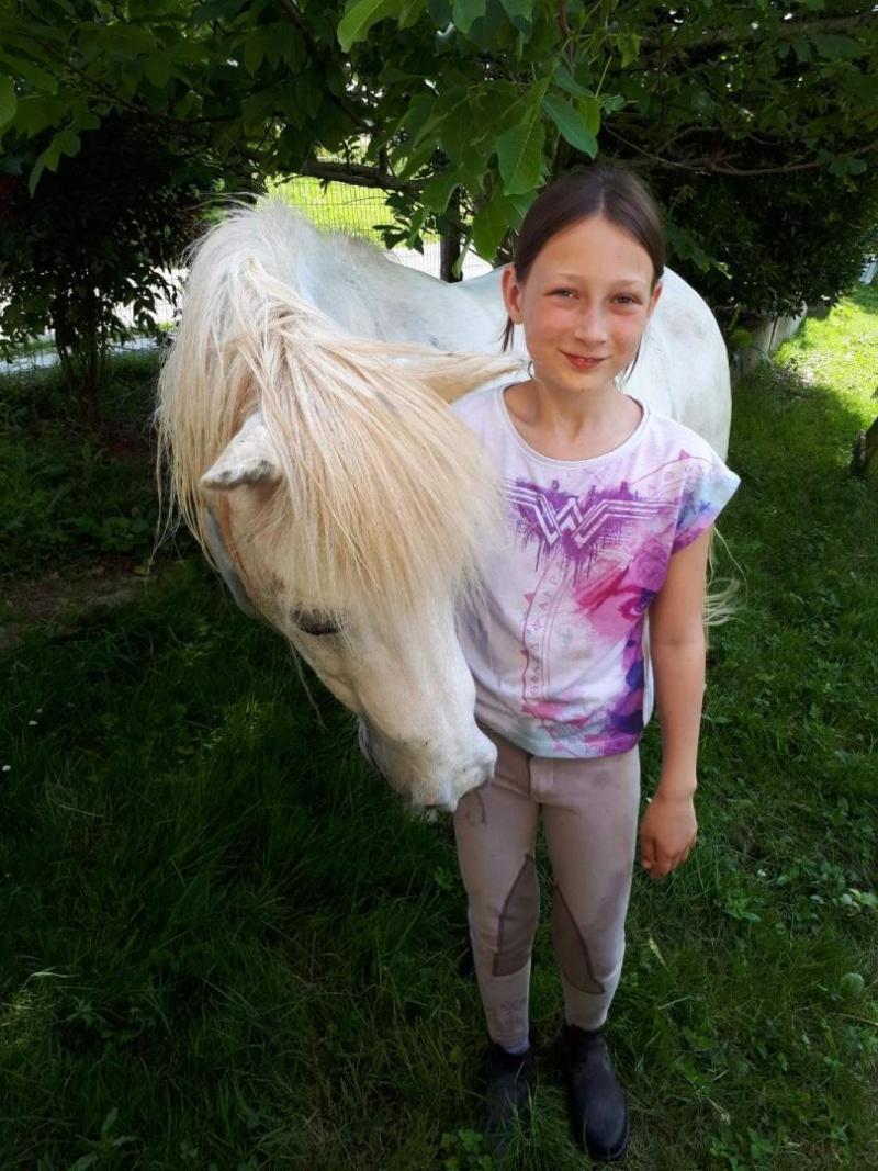APACHE - ONC poney typé Shetland né en 1997- adopté en juillet 2015 par Claire 2019_598