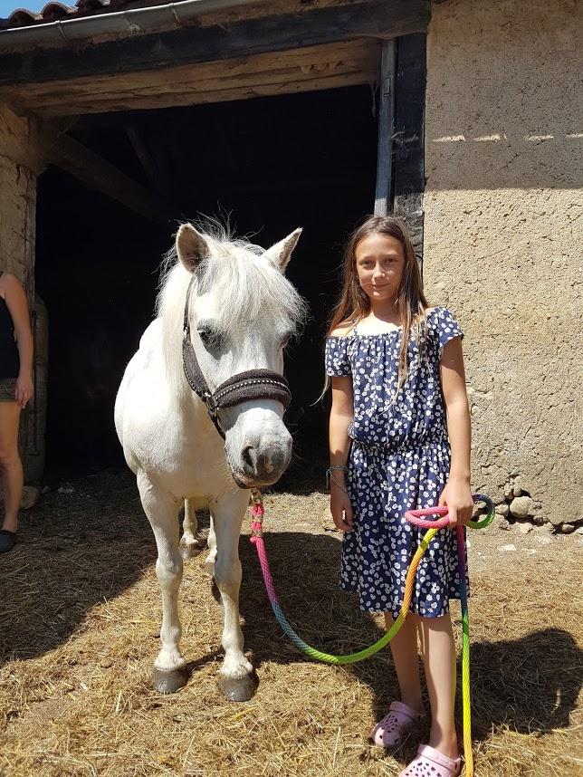 APACHE - ONC poney typé Shetland né en 1997- adopté en juillet 2015 par Claire 2020_842