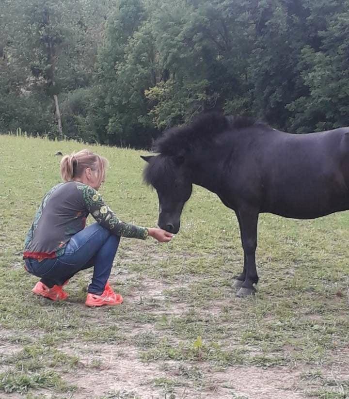 QUOQUIN - ONC poney né en 2004 - adopté  en  juillet 2021 par Maryon 2021_823