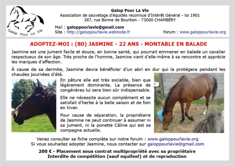 (80) CALINE – Jument ONC Poney née en 2012 – 100 € + don libre à GPLV Czelin10