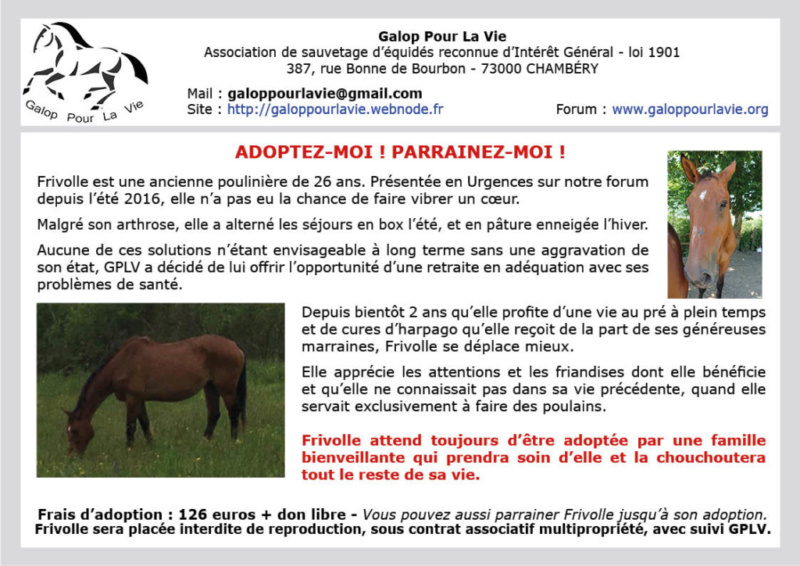 (74) FRIVOLLE - SF née en 1993 - NON MONTABLE - A ADOPTER (126 € + don libre) - Page 2 Frivol10