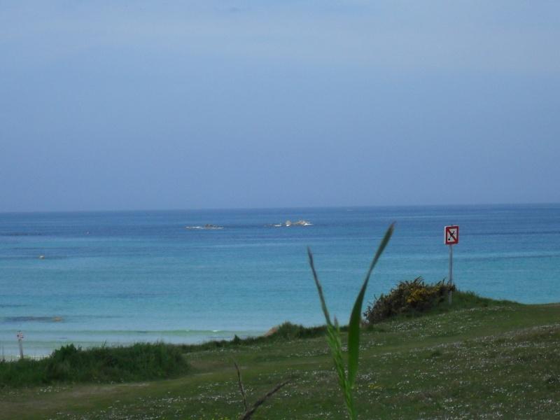 La mer peut-être dangereuse  Sdc10610