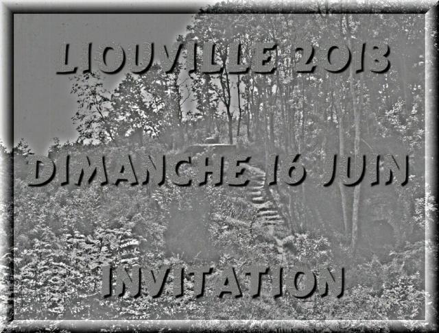FORT DE LIOUVILLE 2013-038