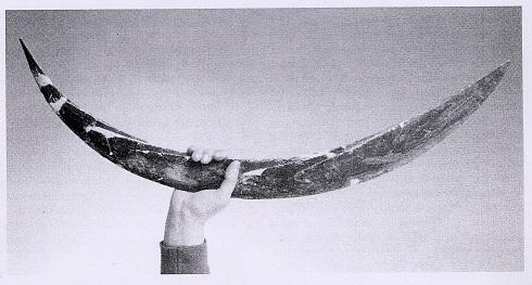Making a boomerang. Polish19