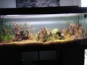 300l brut aquascaping 15734714