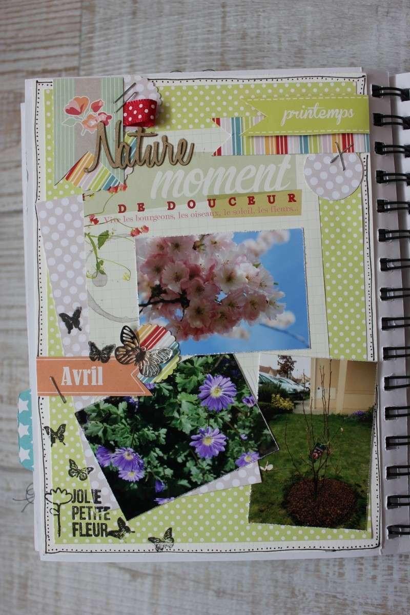 family Diary Seve77 Img_6512