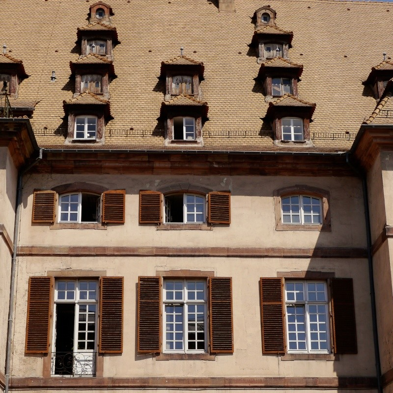 """Concours """"Objectif Neustadt"""" à Strasbourg. P1050713"""