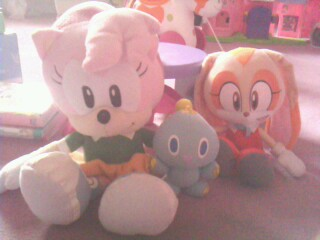 L'anniversaire de Sonic Img09918