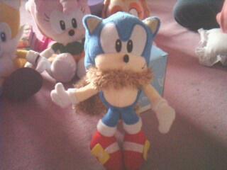 L'anniversaire de Sonic Img09920