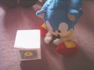 L'anniversaire de Sonic Img10010