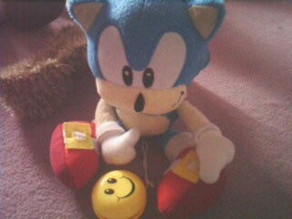 L'anniversaire de Sonic Img10011