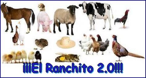 Foro el ranchito Elranc10