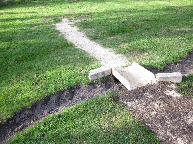 broke ground on my 100 x 60 foot backyard field Img_1511