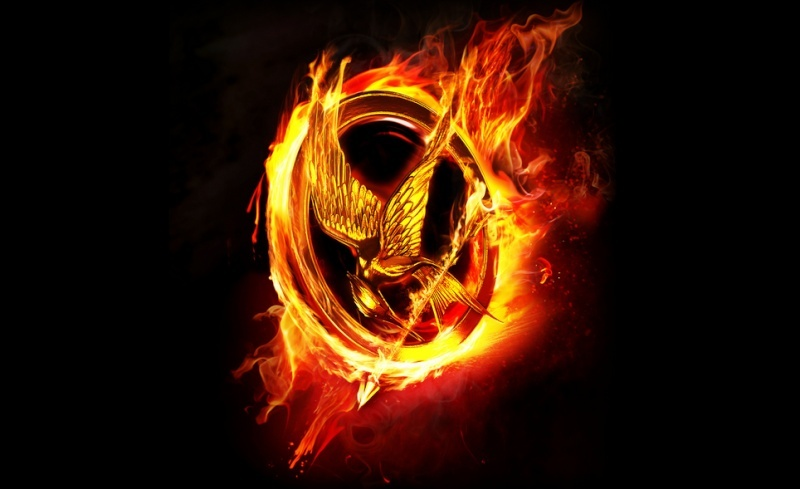 Hunger Games  Mockin10