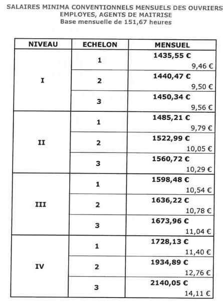 nouvelle grille de salaire minima applicable dés le 1er juillet 2013 Salair13