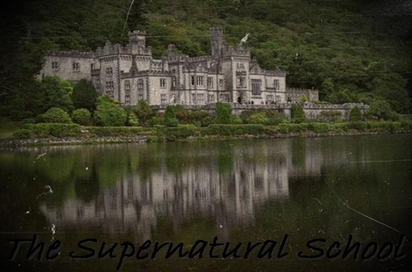 The Supernatural School Intern10