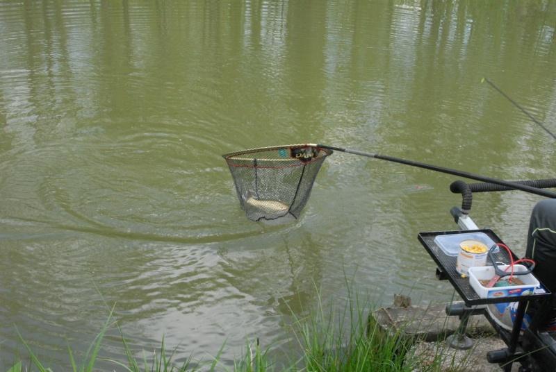 initiation pêche -18 ans à  Bussiare - Page 2 Dsc_0227