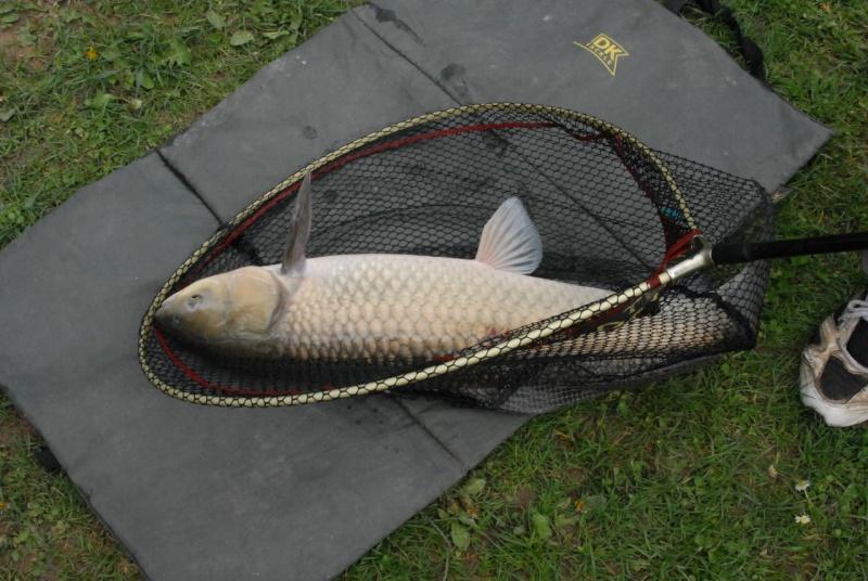 initiation pêche -18 ans à  Bussiare - Page 2 Dsc_0336