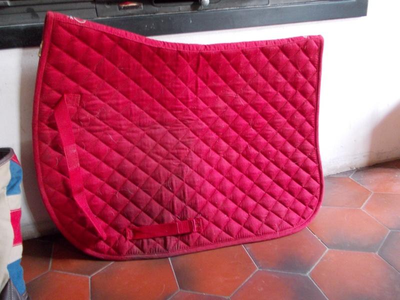 Customiser son tapis de selle Dscn0010