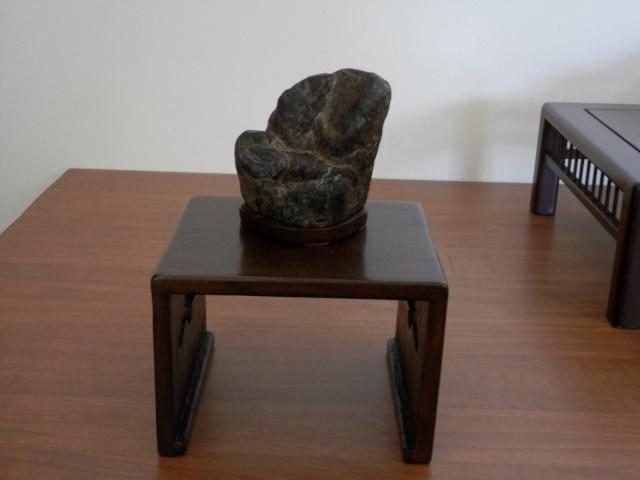 Mostra Brianza Bonsai a monticello 1210