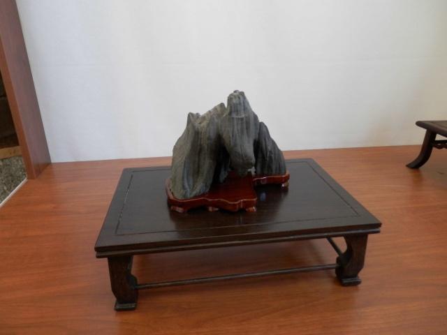 Mostra Brianza Bonsai a monticello 1410
