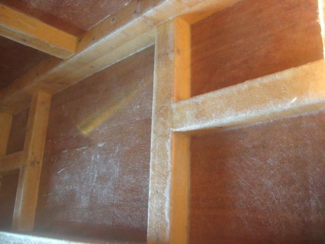 Projet PALUDARIUM (1300 litres) amazonien - Page 3 P_510