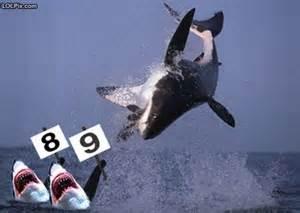 "Has ""It's a trap!"" jumped the shark? Thcaiq11"