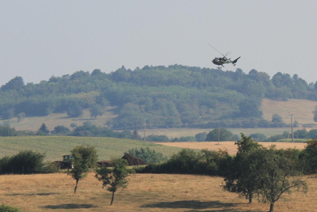 Vol Tactique en Plaine d'Alsace 03081811