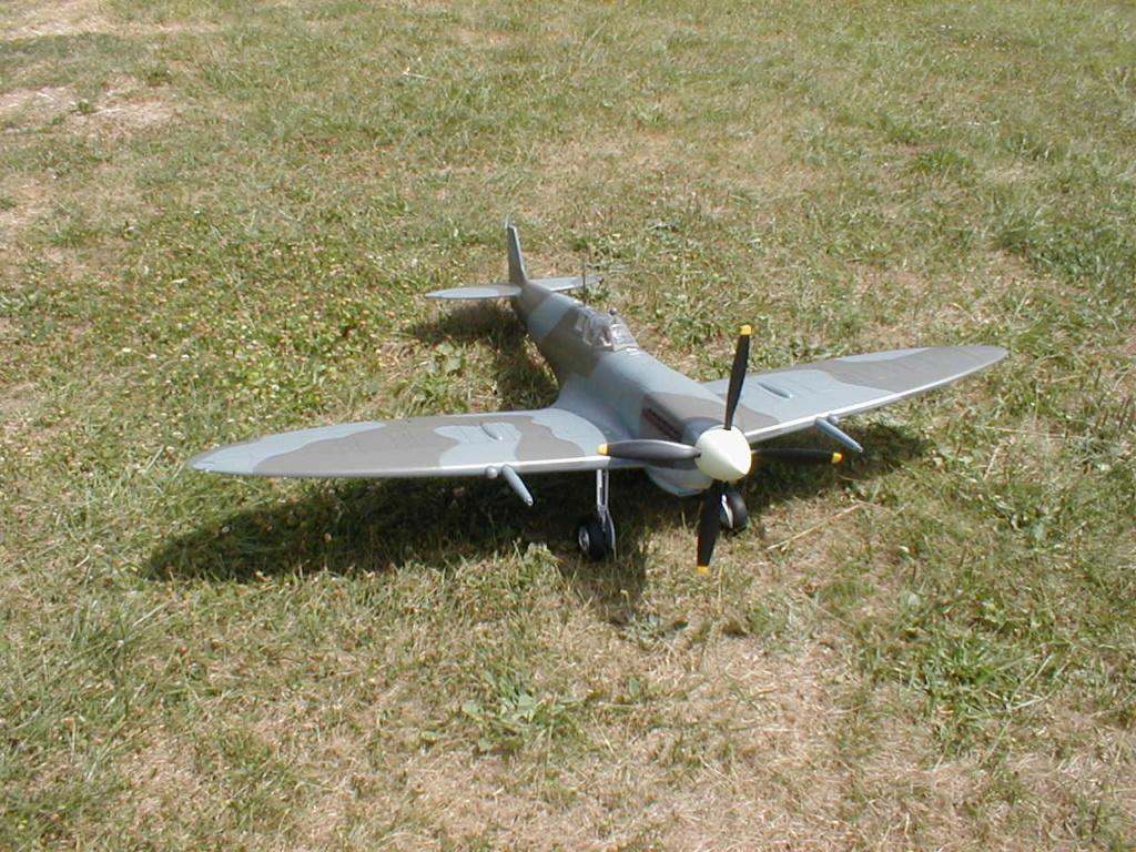 Supermarine Spitfire Mk. IX 1600 PNP - Page 2 P1010031