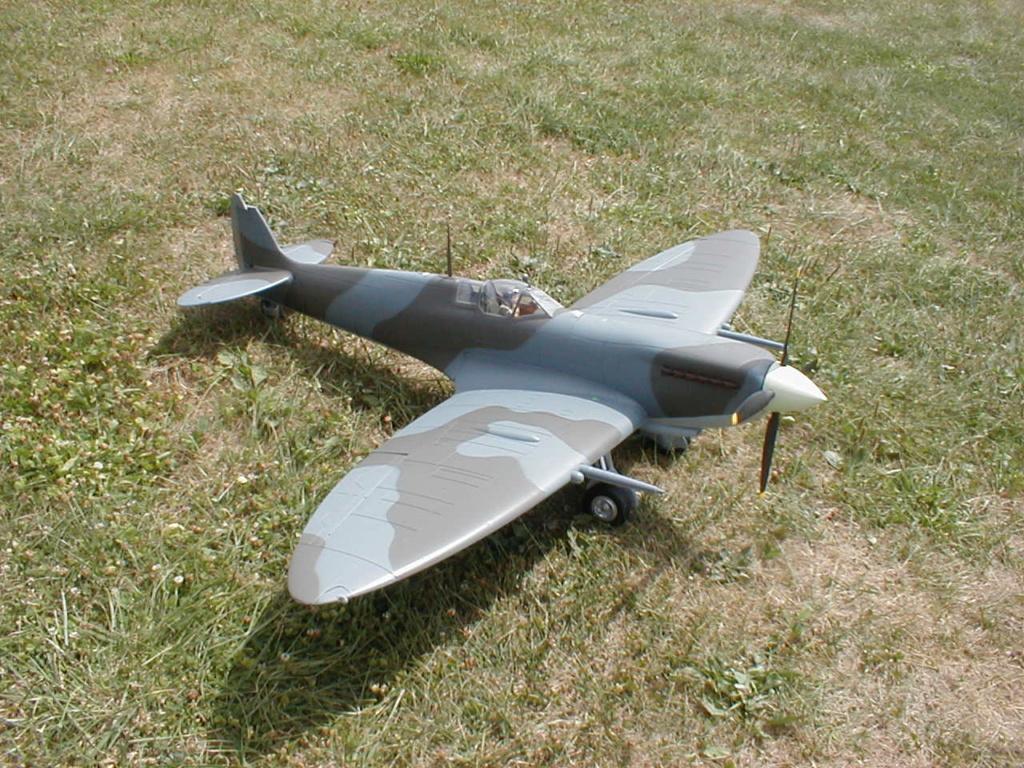 Supermarine Spitfire Mk. IX 1600 PNP - Page 2 P1010032