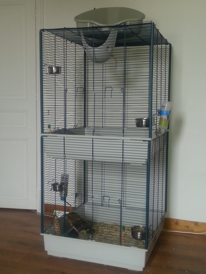 Vend cage rat/furet tower XL  20130510