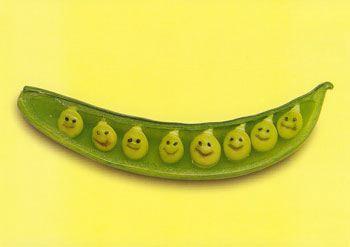 une vie de légume Fruits15
