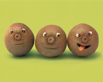 une vie de légume Fruits23
