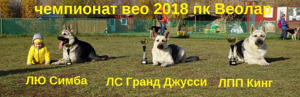 ВОСТОЧНО-ЕВРОПЕЙСКАЯ ОВЧАРКА ВЕОЛАР СИМБА - Страница 5 Dsc03215