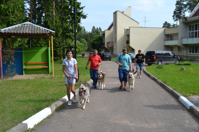 1-2-06-2013 2х-CACIB БЕЛОРУССИЯ  Dsc_0038